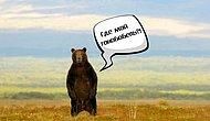 Редкий русский человек сможет набрать 10/10 в этом тесте на знание региональных словечек!
