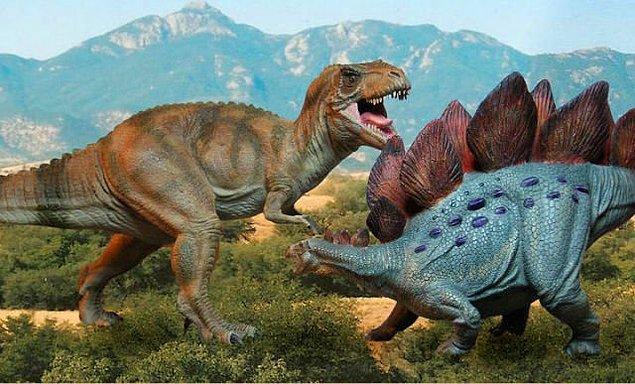 14. Dünyanın zaman çizelgesinde T-rex insanlara Stegosauruslar'a olduğundan daha yakındır.