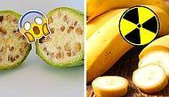 """Радиоактивные бананы? 15 фактов о фруктах, которые заставят вас промолвить: """"Природа, ты такая странная!"""""""