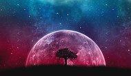 10 свежих фактов, доказывающих, что космос – удивительное и невероятное место