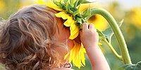 10 неожиданных фактов о запахах, в которые верили в прошлом и настоящем