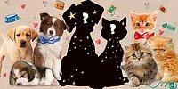 Тест: Собачникам и кошатникам сюда! Это котенок или щенок?