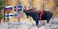 Лось или олень? Тест по национальным животным стран мира