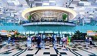 Галереи, дешевые кафе, бесплатные кинотеатры и интернет. Сингапурский аэропорт - мечта любого путешественника!
