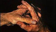 Реалистичные картины португальского художника, которые не могут не впечатлить