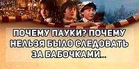 """Тест: Соотнесите цитату из """"Гарри Поттера"""" с фильмом, в котором она звучала"""