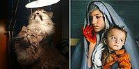 Мастера, которые смогли превратить красивые фото в настоящие картины эпохи Ренессанса