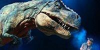 Тест: Сможете ли вы угадать этих динозавров, названия которых должны знать даже взрослые?