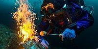 "Обьявлены победители фотоконкурса ""Underwater Photographer of the Year 2018"""
