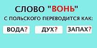 Тест: Если вы сможете угадать значение русских слов в иностранных языках, то можете смело называть себя полиглотом