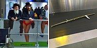 Аэропорт — самое веселое место: уморительные фото и гифки, которые докажут вам это