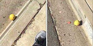 Житель Сан-Диего снял на видео, как лимон в течение 2-х минут катится по дороге. И его просмотрели уже более 6,5 млн раз