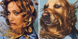 Французский фотограф воссоздает культовые образы Мадонны с участием своего лабрадора, и иногда собака выглядит круче, чем оригинал!