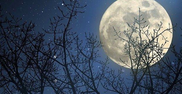 Dolunayda aydınlanan bir gece