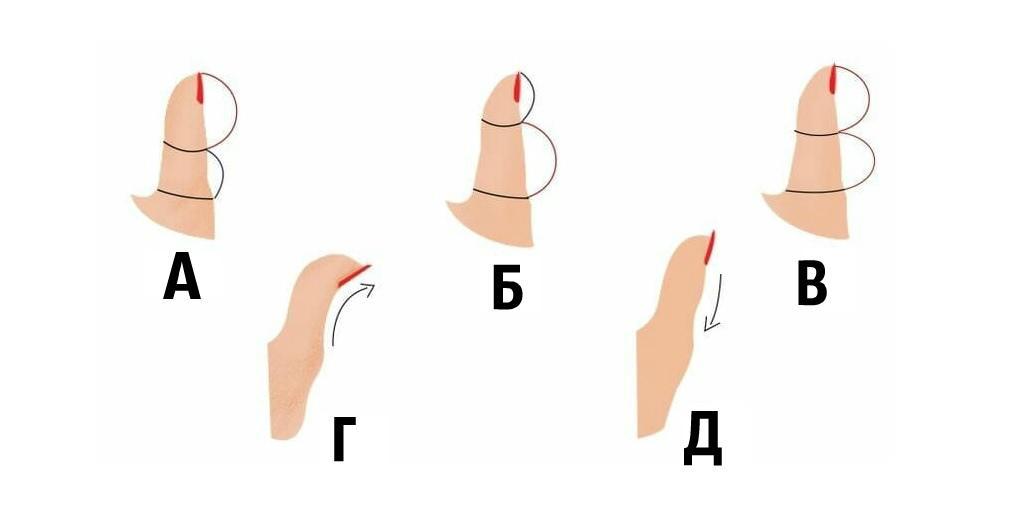 Характеристика большого пальца в хиромантии