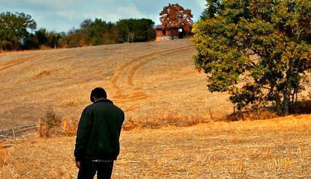 14. Ahlat Ağacı