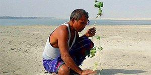 40 лет назад 16-летний юноша начал высаживать на удалённом острове каждый день дерево, и теперь это место невозможно узнать
