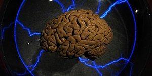 Тест, который проверит вас на сообразительность и логическое мышление