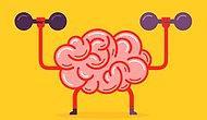 Тест, который проверит, остались ли в вашей голове хоть какие-нибудь школьные знания