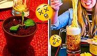 Кушайте, не подавитесь: Абсолютно фейловые и нелепые провалы ресторанов в подаче своих блюд
