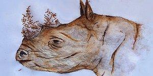 Художница из ЮАР создает шедевры при помощи муравьев