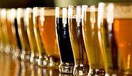 13 прохладных и хмельных фактов о пиве