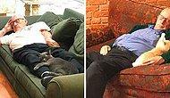 Вы будете в восторге от 75-летнего волонтёра, который отдыхает вместе с кошками из местного приюта