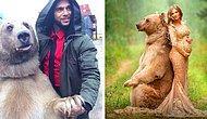 Говорите, медведи в России не ходят по улицам? Встречайте Степана - звезду русского шоу-бизнеса (и не только)