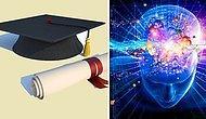 Эмоциональный IQ-тест определит, насколько вы образованны