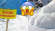 Тест: Смогли бы вы выжить во время схода лавины?