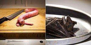 От 100-летних яиц до вина из летучей мыши: Первый в мире музей отвратительной еды