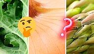 А это еще что за фрукт? Развлекательный тест в картинках для тех, кому нечем заняться