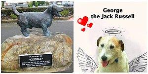 What Did We Do To Deserve Dogs? George the Jack Russell Dies Saving Kids!