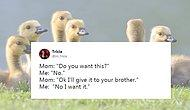 21 Perfectly Funny Tweets Anyone Who Grew Up With Siblings Can Relate To!