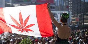 Canadians Are Cheering! Canada Is Legalizing Recreational Marijuana!