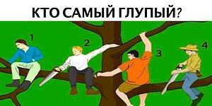 Тест: Кто самый глупый на дереве? Сделайте выбор, а мы проведём психологический анализ вашей личности