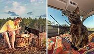 Человек и кошка: молодой человек путешествует по Австралии и выкладывает фото, от которых тепло на душе