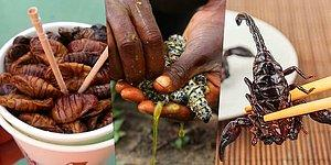 "Are You Brave Enough To Eat? 10 Popular Insect ""Snacks"" Around The World!"