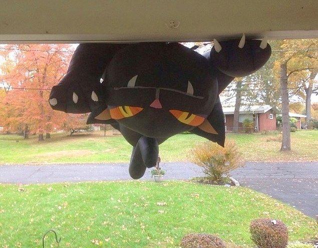 """5. """"Evime kedi şeklinde bir uçan balon almıştım Cadılar Bayramı için... Geçen sabah şu manzaraya uyandım."""""""