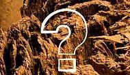 Тест: Угадаете ли вы, что за предмет в увеличенном изображении?