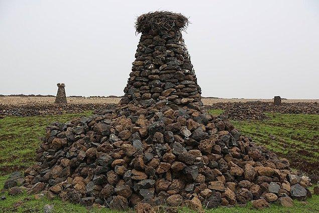 Diyarbakır'ın Çınar ilçesine bağlı Ayveri köyünde yaşayan çoban Mehmet Salih Arslan, 23 yıldır her yere taştan kuleler yapıyor ve leyleklerin yuva sorununa çözüm üretiyor.