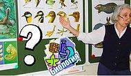 Тест: Вопросы из школьного курса биологии, на которые ответит любой отличник. А вам под силу?