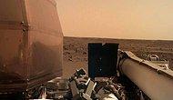 NASA, 6 Yıl Sonra Mars'a İndi: InSight Yüzeyden İlk Fotoğrafı Paylaştı