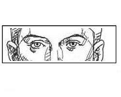 Если ваши глаза такие же, как на рисунке, вашими предками были представители европеоидной расы.