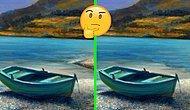 Тест: Только очень внимательным удастся найти единственное отличие на всех этих фотографиях