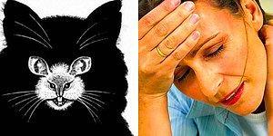 Тест: Ваш визуальный выбор расскажет о вашем недостатке, который раздражает окружающих
