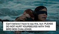 Netflix Warned Fans About 'Bird Box Challenge' To Not Hurt Themselves!