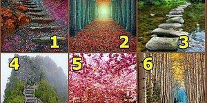 Тест: Куда приведет ваша жизненная дорога?