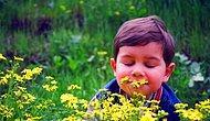 Тест: Что запахи расскажут о вас?
