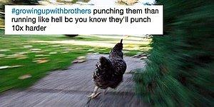 """20 Witty Tweets Will Make Anyone Growing Up With Brothers Go """"Me""""!"""